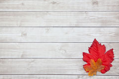 Autumn Thanksgiving Background Immagine Stock