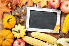 Autumn Thanksgiving Background Fotografia Stock