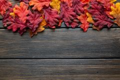 Autumn Thanksgiving background and frame with leaves and small pumpkins surrounding the frame stock images