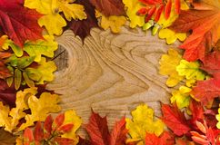 Autumn Thanksgiving Background Hojas coloridas fotos de archivo