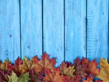 Autumn Thanksgiving Background Stock Photos