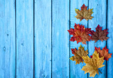 Autumn Thanksgiving Background Royalty Free Stock Image