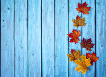 Autumn Thanksgiving Background Stock Image