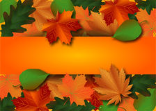 Autumn thanksgiving background royalty free illustration