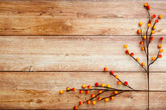 Autumn Thanksgiving Background Stock Photography