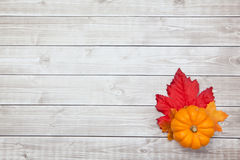 Autumn Thanksgiving Background. On wood Royalty Free Stock Images