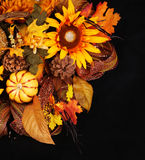 Autumn or Thanksgiving Bouquet over black background. Pumpkin Stock Photography