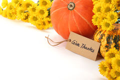 Autumn or Thanksgiving Concept Stock Images