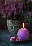 Autumn thanksgiving decor Royalty Free Stock Images