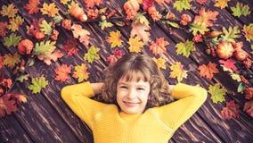 Autumn Thanksgiving Holiday Concept Imagem de Stock