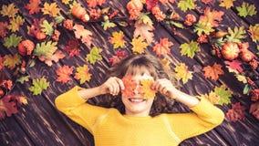 Autumn Thanksgiving Holiday Concept Fotografia de Stock Royalty Free