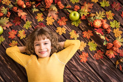 Autumn Thanksgiving Holiday Concept Imagem de Stock Royalty Free