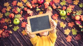 Autumn Thanksgiving Holiday Concept Foto de Stock Royalty Free