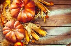 Autumn Thanksgiving pumpor över träbakgrund Arkivfoto