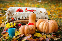 Autumn thanksgiving still life Royalty Free Stock Images