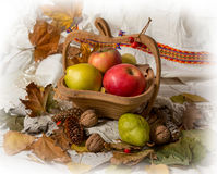 Autumn theme Stock Photo