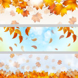 Autumn Theme Banners Royalty-vrije Stock Foto