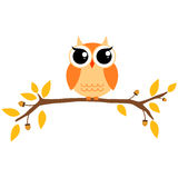 Autumn themed cute owl and branch Royalty Free Stock Photos