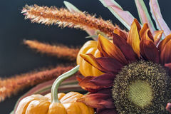 Autumn themed still life with black background Royalty Free Stock Photos