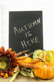 Autumn themed still life with chalkboard Royalty Free Stock Image