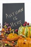 Autumn themed still life with chalkboard Stock Photos
