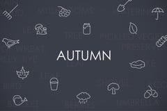 Autumn Thin Line Icons Fotografia Stock Libera da Diritti