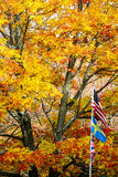 Autumn with Three Flags Stock Photos