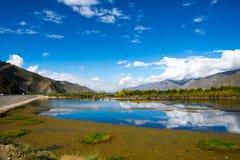 Autumn in Tibet Royalty Free Stock Photo
