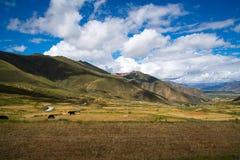 Autumn in Tibet Royalty Free Stock Image