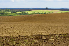 Autumn tillage bordered. With the forest Stock Photo