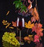 Autumn Time Imágenes de archivo libres de regalías