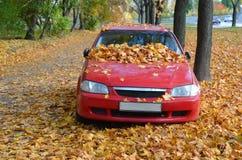 Autumn Time Lizenzfreie Stockfotos