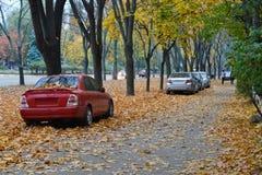 Autumn Time Stockbild