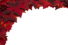 Autumn Time Background Stock Photography