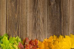 Autumn Time Background, Some fall leaves on weathered wood with copy space for your text. Autumn Time Background, Some fall leaves on weathered wood with copy Stock Images