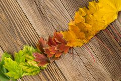 Autumn Time Background, Some fall leaves on weathered wood with copy space for your text. Autumn Time Background, Some fall leaves on weathered wood with copy Stock Image