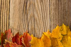 Autumn Time Background, Some fall leaves on weathered wood with copy space for your text. Autumn Time Background, Some fall leaves on weathered wood with copy Royalty Free Stock Images