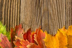 Autumn Time Background, Some fall leaves on weathered wood with copy space for your text. Autumn Time Background, Some fall leaves on weathered wood with copy Stock Photo