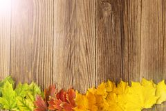 Autumn Time Background, Some fall leaves on weathered wood with copy space for your text. Autumn Time Background, Some fall leaves on weathered wood with copy royalty free stock photo