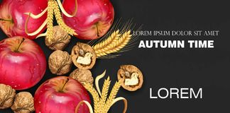 Autumn time banner with apples and walnuts Vector realistic. Detailed 3d design. dark backgrounds. Autumn time banner with apples and walnuts Vector realistic stock illustration