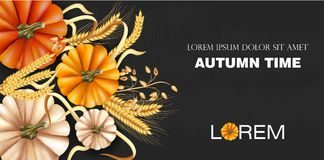 Autumn time banner with pumpkin and wheat ears Vector realistic. Detailed 3d design. dark backgrounds. Autumn time banner with pumpkin and wheat ears Vector stock illustration