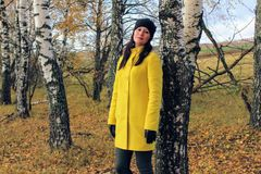 Autumn time: beautiful girl in a yellow coat posing against an autumnal birch forest stock images