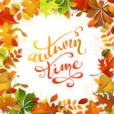Autumn time. Royalty Free Stock Images