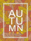 Autumn Time Follaje de oro El ejemplo del vector se marchitó las hojas Fotografía de archivo