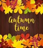 Autumn Time Fond en bois d'automne avec les feuilles et le lettrage rouges jaunes de vert Photographie stock