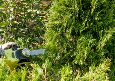 Cutting bushes / trimming the bushes Stock Photos