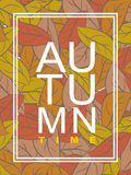 Autumn time. Golden foliage. Vector illustration wilted leaves. Stock Photography