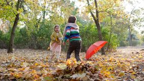 Autumn time, kids gather yellow fallen leaves into pile on background of trees and red umbrella in park. Autumn time, kids gather yellow fallen leaves into a stock footage