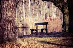 Autumn time in Park Swierklaniec, Poland. Stock Photos