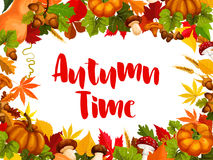 Autumn time poster for fall nature season template Royalty Free Stock Photography